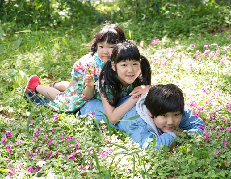 緑の中での3人兄弟の写真