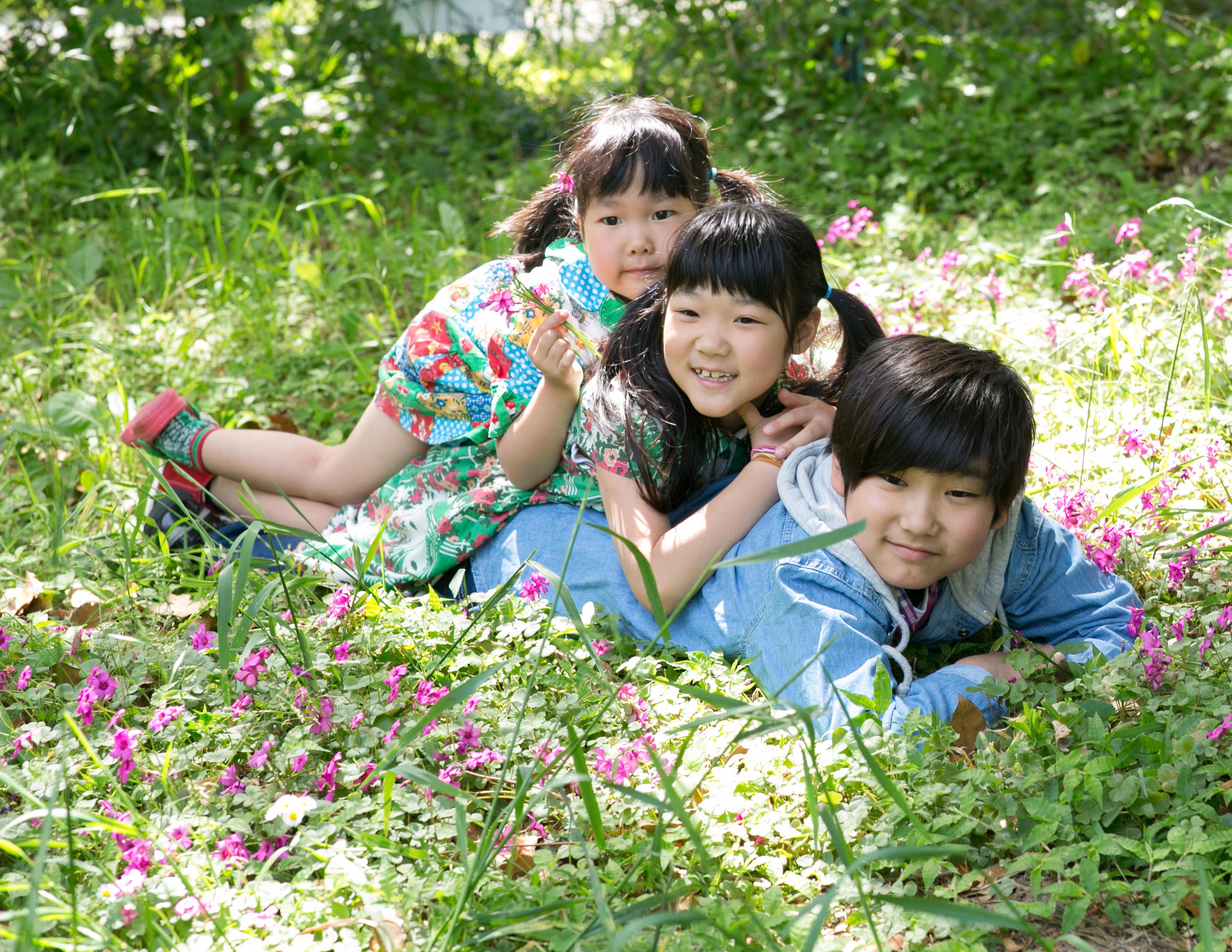 緑の中で三兄弟の写真